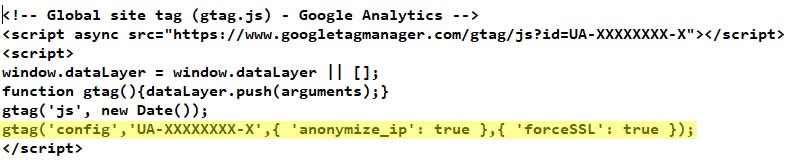 gtag script anonymizeip